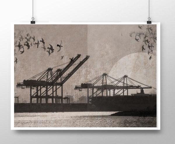 poster_cranes